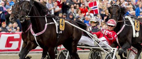 Norsk hest traver om millioner i Sverige