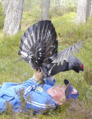 Her blir Marius William (13) angrepet av en illsint tiur