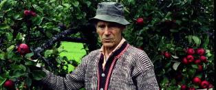 Kjente lyrikere skriver dikt om lengsel til Olav H. Hauge