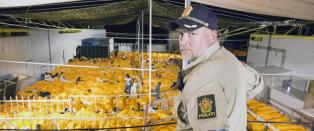 1017 mennesker reddet fra drukningsd�den av norske Siem Pilot