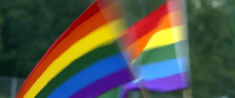 �Homofili er bare en trend�