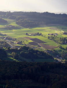 Steinrik sm�kommune i Sveits kj�pte seg flyktningfri. Tok heller imot millionbot enn ti asyls�kere