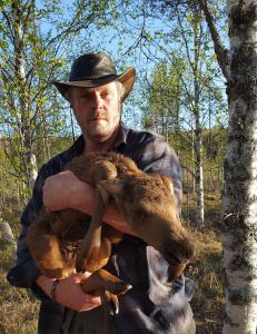 Her har Janne akkurat reddet den nyfødte elgen fra drukningsdøden