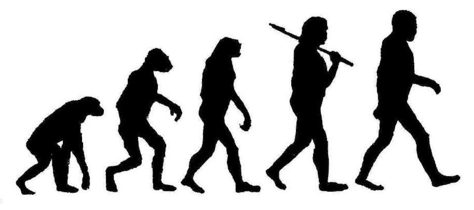EVOLUSJONEN: Menneskets utvikling gjennom flere stadier, og s�rlig teoriene om missing link, har v�rt gjenstand for mang en Illustrert Vitenskap-forside. Mange briter har nok g�tt glipp av de sakene.