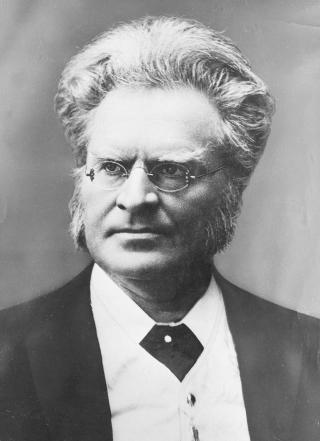 VILLE HA NORGE I ET PANGERMANSK FELLESSKAP: Bj�rnstjerne Bj�rnsson skrev om den garmanske stammef�lelse, og tenkte i sterkt etniske kategorier. Han var ogs� tilhenger av demokratiet, og ble mer og mer skuffet over det autorit�re, tyske keiserriket utover 1870-tallet. FOTO: NTB/SCANPIX