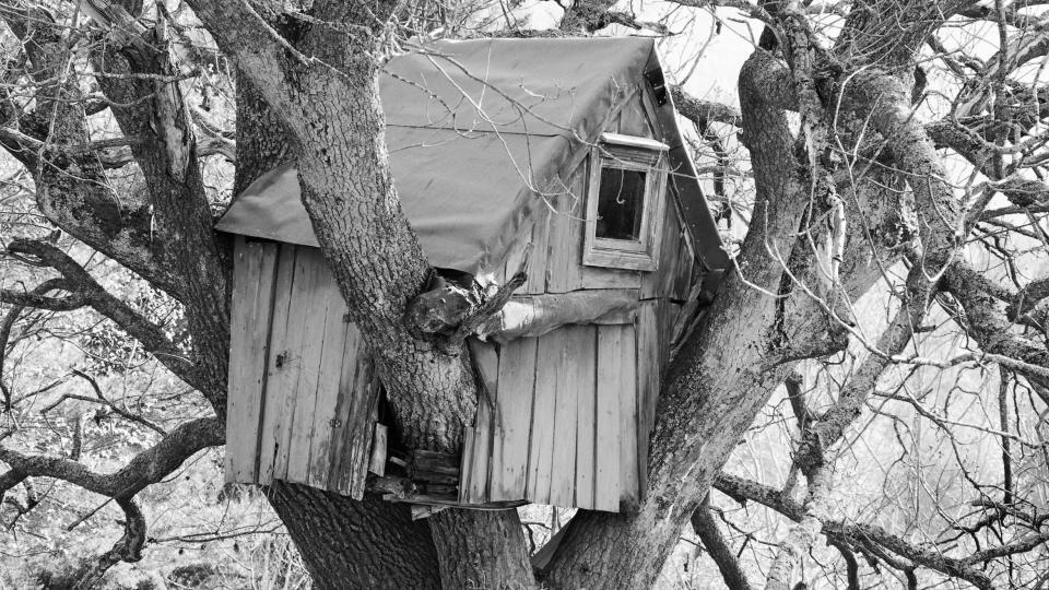 Huset i skogen bok