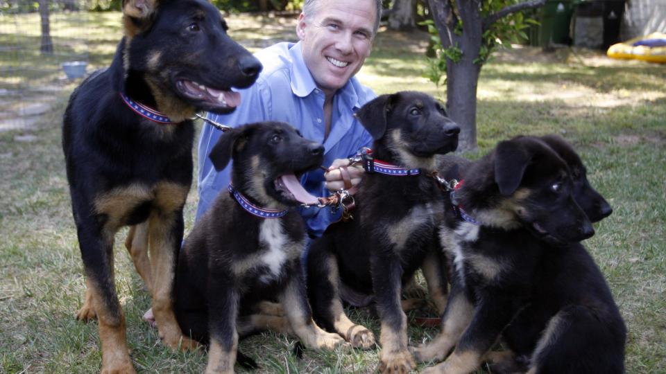Håper ikke hunde kloning tar helt av. thumbnail