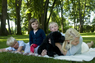 LEKEN: Valpen Milly Kakao leker med sin nye familie. Foto: Veronica Mel� / Det Kongelige Norske Hoff / SCANPIX