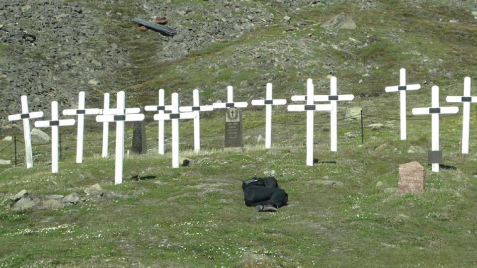 Godt å høre at det ikke bare er døde sjeler på Svalbard. thumbnail