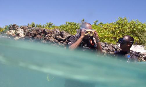 maldivene klima