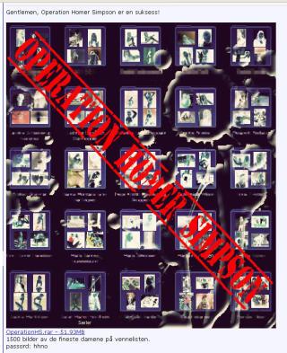 57 MEGABYTE KOMPRIMERTE JENTEBILDER: I alt 1500 bilder ligger i mappa Operation Homer Simpson p� Hip-hop.no. Skjermdump fra Hip-hop.no