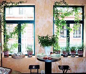 Olje bord med olivenolje