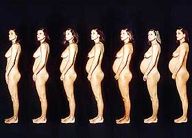 hvornår bliver man gravid Assens