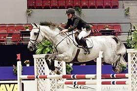 hest2.jpg