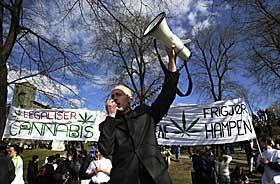 Legalisering av hasj 2017