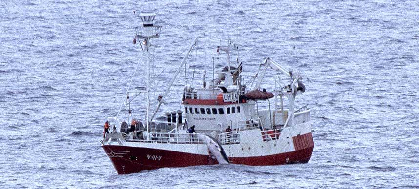 FILMET: Hvalfangsskuta �Willassen Senior� ble filmet fra land utenfor Vard� i mai. Filmen viser at det tok 14-15 minutter � avlive v�gehvalen de jaget.