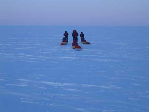 UTFORDRENDE: Skog innr�mmer at Nordpolekspedisjonen har blitt mer spenningsfyllt enn turen til Sydpolen for fire m�neder siden. R�ker og skruis b�d p� store utfordringer for eventyrerne.