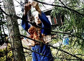 EN HYTTE I SKOGEN: «Hun kom aldri i noen virkelig berøring med selve skogens ånd ... om den da var i besittelse av noe så fjollet,» skriver D.H. Lawrence i «Lady Chatterleys elsker». Hva sier du, Bjørn, finnes skogens ånd?