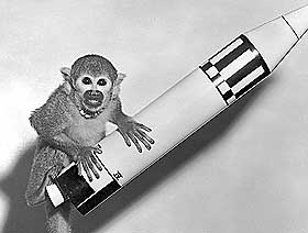OVERLEVDE: Apen Baker ble sendt til verdensrommet med Jupiter i 1959.