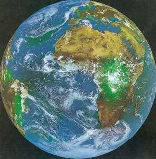 Utviklingen av livet på jorda