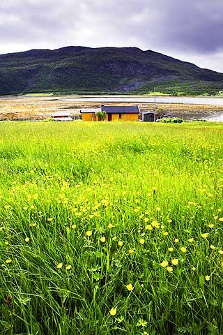 DER INGEN SKULLE: Slik ser det ut hjemme hos Helga Pedersen i Vestertana. Huset hennes er midt p� bildet.