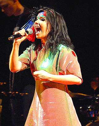 - BØR SATSE PÅ KULTUR: Også Björk selv har motsatt seg utbyggingen av aluminiumsindustri på Island. Fotografen Hördur tror både musikk og miljøvern vil bli viktige eksportartikler fra sagaøya i framtida.